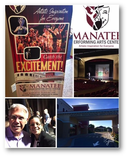 Manatee Performing Arts Center Advanced Earned Income Discovery Session Photo 071717
