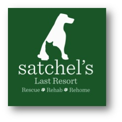 Satchel's Last Resort Logo Shadow