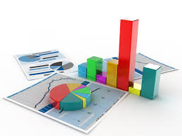 Custom Data and Reports